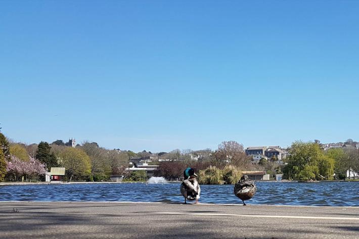 Coronation Park, Helston