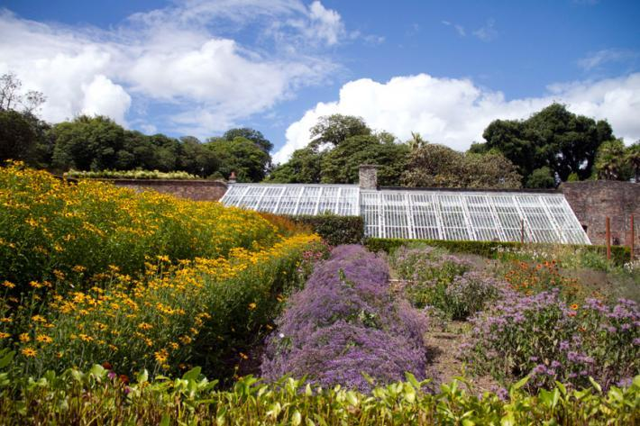 Summer in the Heligan Gardens